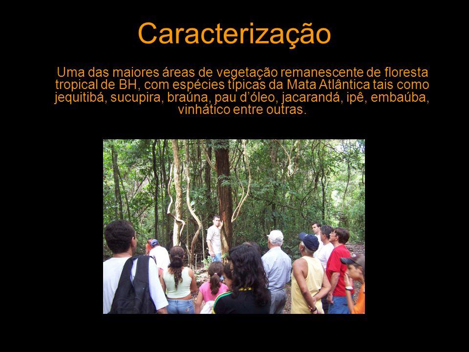 Caracterização Uma das maiores áreas de vegetação remanescente de floresta tropical de BH, com espécies típicas da Mata Atlântica tais como jequitibá,