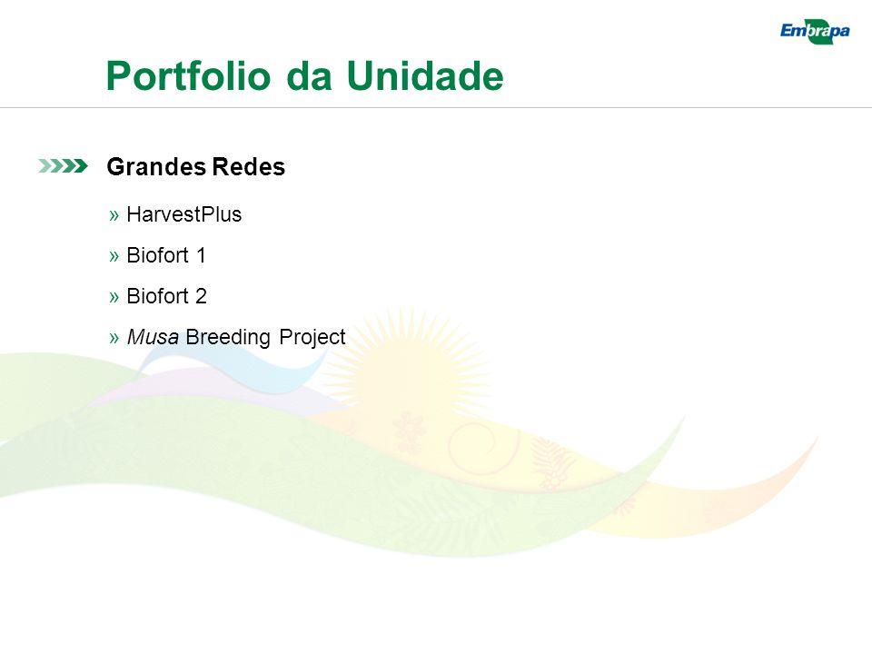 Portfolio da Unidade Grandes Redes » HarvestPlus » Biofort 1 » Biofort 2 » Musa Breeding Project