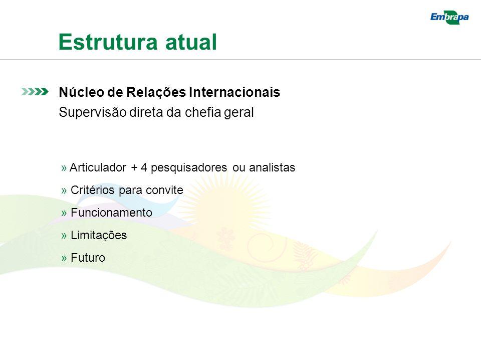 Estrutura atual Núcleo de Relações Internacionais Supervisão direta da chefia geral » Articulador + 4 pesquisadores ou analistas » Critérios para convite » Funcionamento » Limitações » Futuro