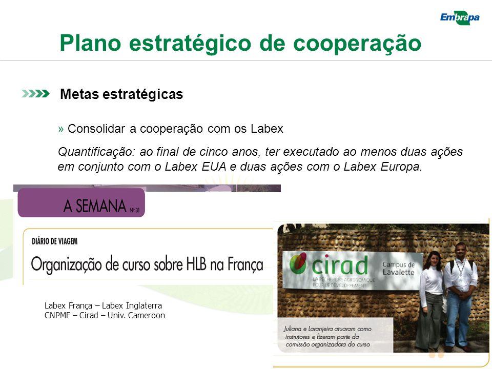 Plano estratégico de cooperação Metas estratégicas » Consolidar a cooperação com os Labex Quantificação: ao final de cinco anos, ter executado ao menos duas ações em conjunto com o Labex EUA e duas ações com o Labex Europa.