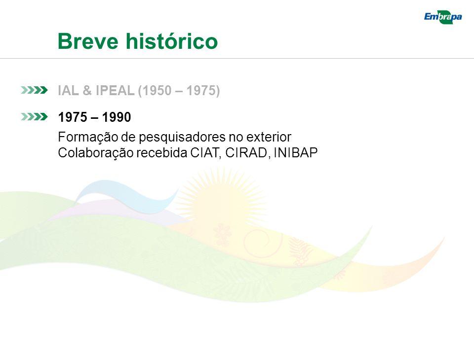 Breve histórico IAL & IPEAL (1950 – 1975) 1975 – 1990 Formação de pesquisadores no exterior Colaboração recebida CIAT, CIRAD, INIBAP