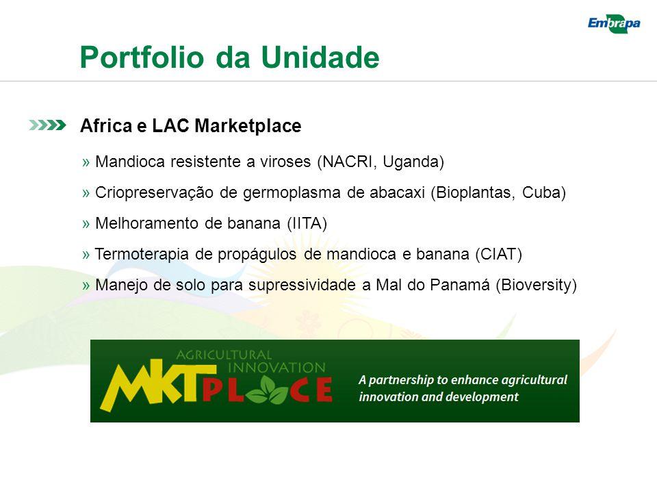 Portfolio da Unidade Africa e LAC Marketplace » Mandioca resistente a viroses (NACRI, Uganda) » Criopreservação de germoplasma de abacaxi (Bioplantas, Cuba) » Melhoramento de banana (IITA) » Termoterapia de propágulos de mandioca e banana (CIAT) » Manejo de solo para supressividade a Mal do Panamá (Bioversity)