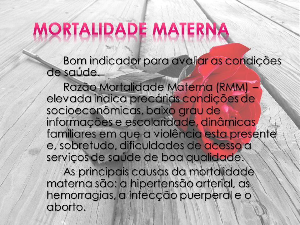 Bom indicador para avaliar as condições de saúde. Razão Mortalidade Materna (RMM) – elevada indica precárias condições de socioeconômicas, baixo grau