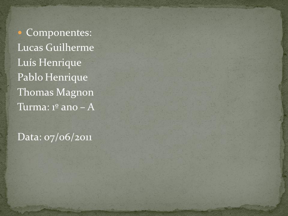 Componentes: Lucas Guilherme Luís Henrique Pablo Henrique Thomas Magnon Turma: 1º ano – A Data: 07/06/2011