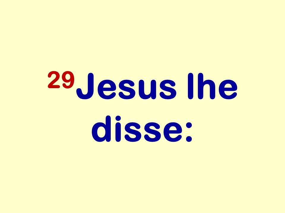 29 Jesus lhe disse: