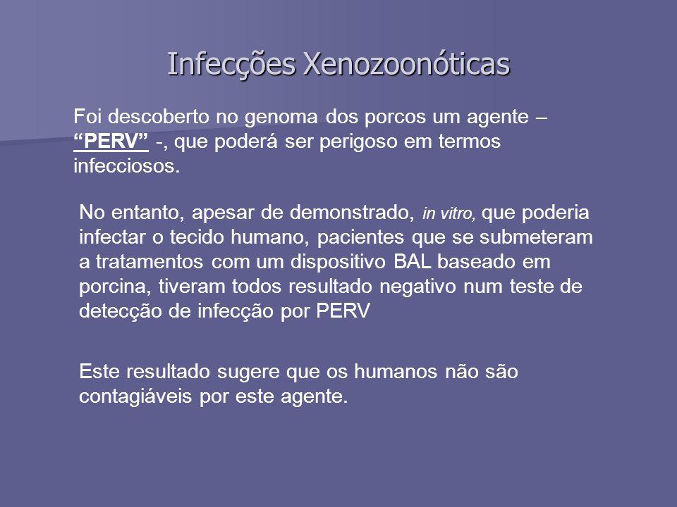 Infecções Xenozoonóticas Foi descoberto no genoma dos porcos um agente – PERV -, que poderá ser perigoso em termos infecciosos.