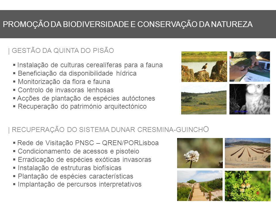 PROMOÇÃO DA BIODIVERSIDADE E CONSERVAÇÃO DA NATUREZA | GESTÃO DA QUINTA DO PISÃO | RECUPERAÇÃO DO SISTEMA DUNAR CRESMINA-GUINCH O Instalação de culturas cerealíferas para a fauna Beneficiação da disponibilidade hídrica Monitorização da flora e fauna Controlo de invasoras lenhosas Acções de plantação de espécies autóctones Recuperação do património arquitectónico Rede de Visitação PNSC – QREN/PORLisboa Condicionamento de acessos e pisoteio Erradicação de espécies exóticas invasoras Instalação de estruturas biofísicas Plantação de espécies características Implantação de percursos interpretativos