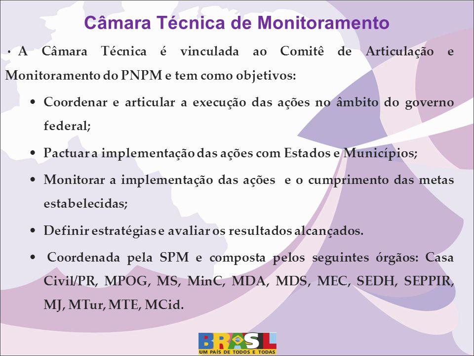 A Câmara Técnica é vinculada ao Comitê de Articulação e Monitoramento do PNPM e tem como objetivos: Coordenar e articular a execução das ações no âmbi