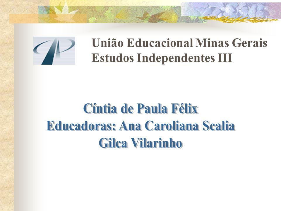 União Educacional Minas Gerais Estudos Independentes III