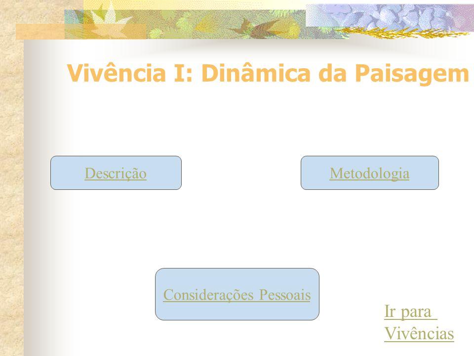 Vivência I: Dinâmica da Paisagem DescriçãoMetodologia Considerações Pessoais Ir para Vivências