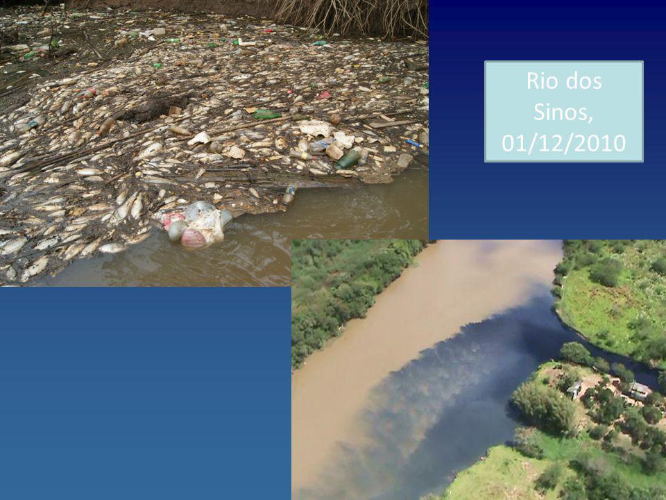 Rio dos Sinos, 01/12/2010