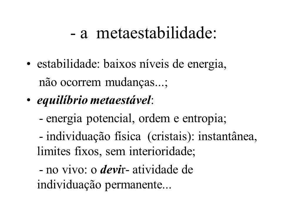 - a metaestabilidade: estabilidade: baixos níveis de energia, não ocorrem mudanças...; equilíbrio metaestável: - energia potencial, ordem e entropia; - individuação física (cristais): instantânea, limites fixos, sem interioridade; - no vivo: o devir- atividade de individuação permanente...