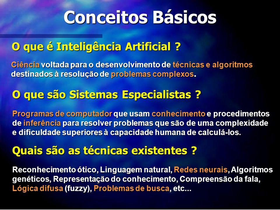Conceitos Básicos O que é Inteligência Artificial ? Ciência voltada para o desenvolvimento de técnicas e algoritmos destinados à resolução de problema
