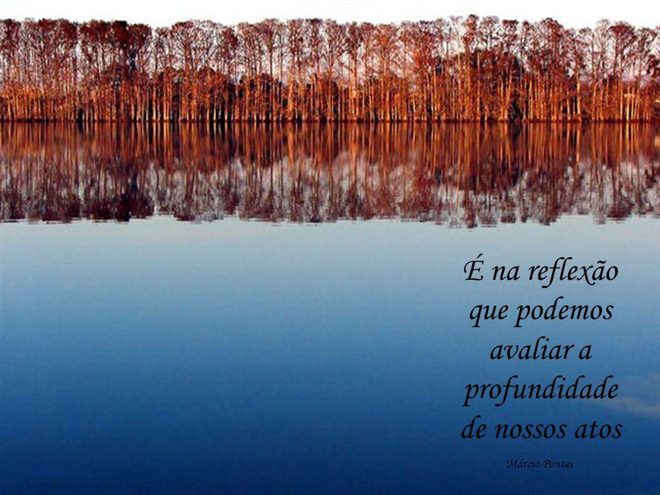 É na reflexão que podemos avaliar a profundidade de nossos atos Márcio Pontes