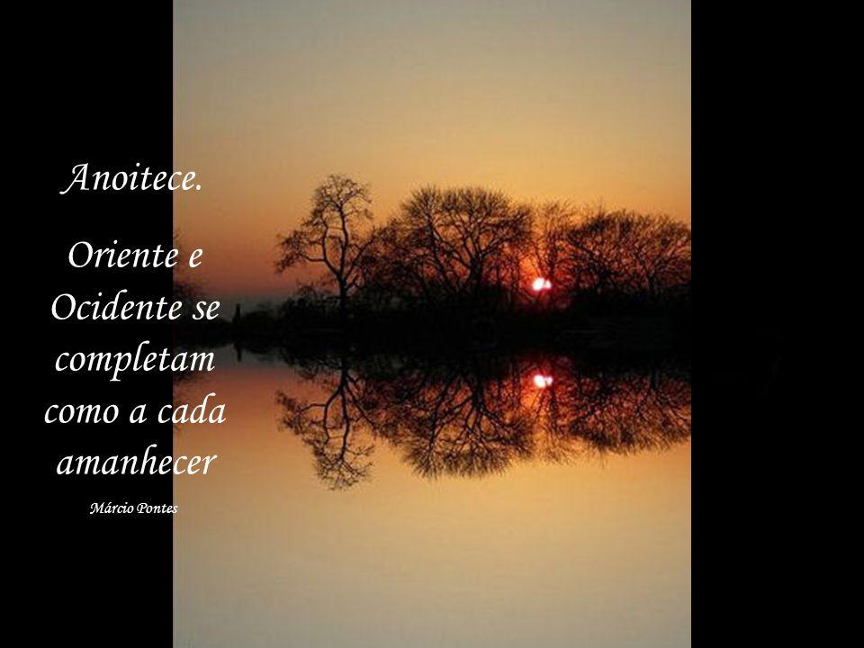 O nosso espelho reflete as nossas necessidades Márcio Pontes