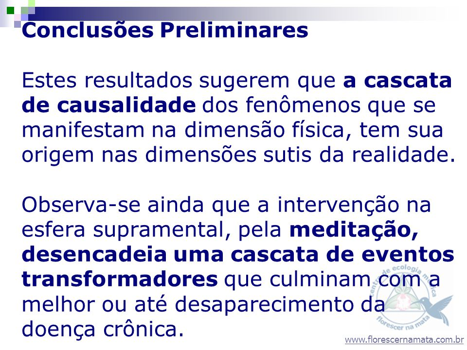 www.florescernamata.com.br Conclusões Preliminares Estes resultados sugerem que a cascata de causalidade dos fenômenos que se manifestam na dimensão f