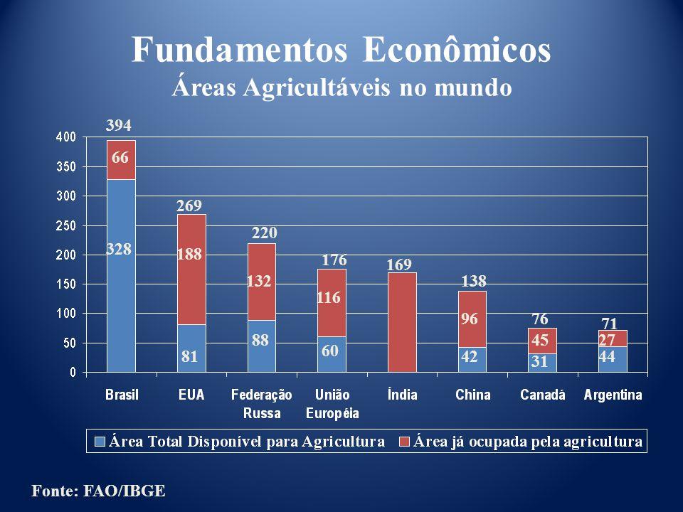 Fundamentos Econômicos Áreas Agricultáveis no mundo 394 328 188 269 176 220 169 138 76 71 66 81 132 88 116 60 42 96 45 31 44 27 Fonte: FAO/IBGE