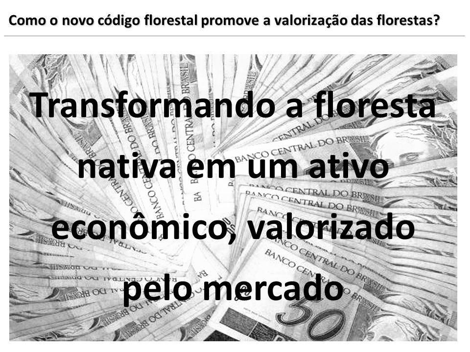 Como o novo código florestal promove a valorização das florestas? Transformando a floresta nativa em um ativo econômico, valorizado pelo mercado
