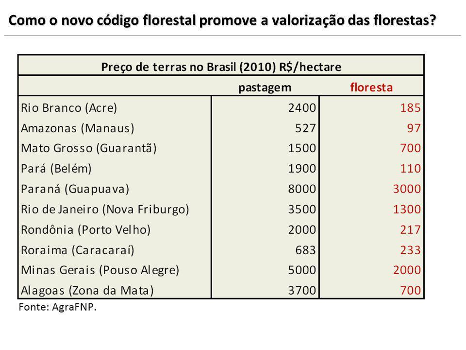 Como o novo código florestal promove a valorização das florestas?