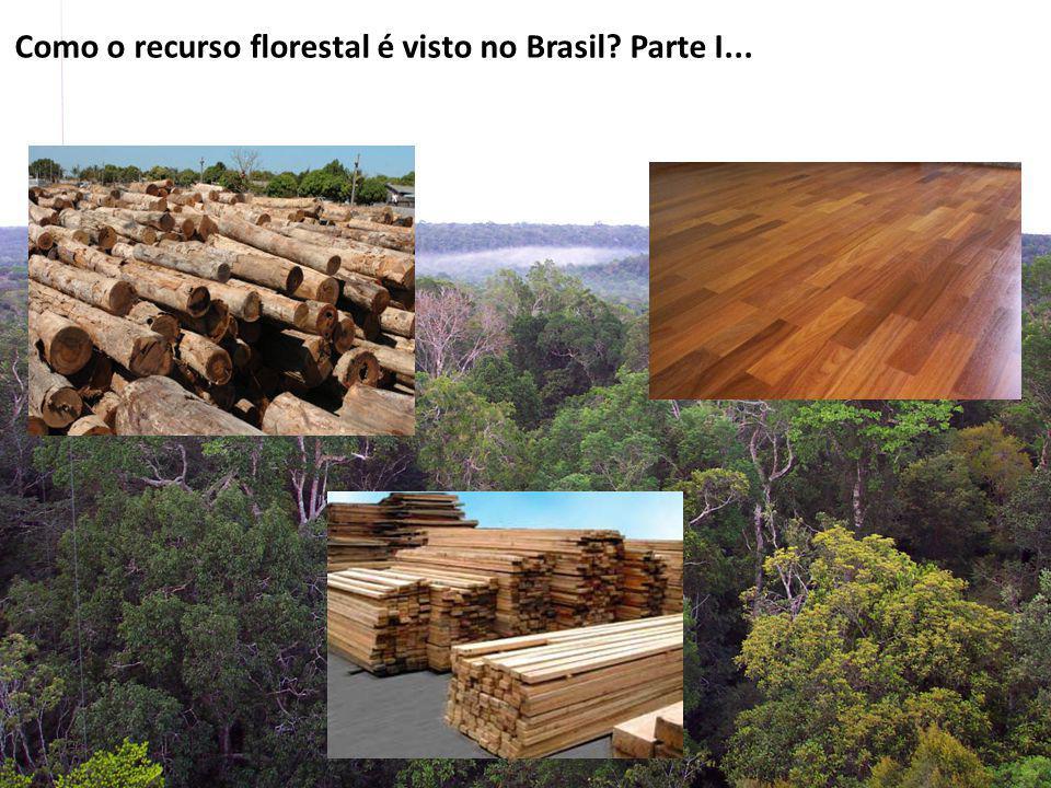 Como o recurso florestal é visto no Brasil? Parte I...