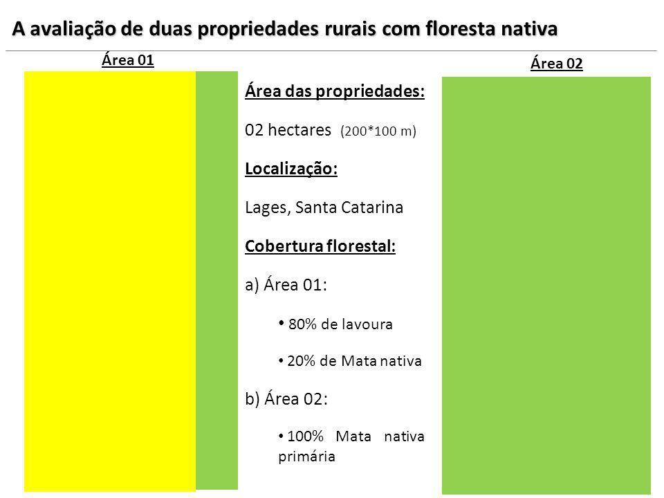 Área das propriedades: 02 hectares (200*100 m) Localização: Lages, Santa Catarina Cobertura florestal: a) Área 01: 80% de lavoura 20% de Mata nativa b
