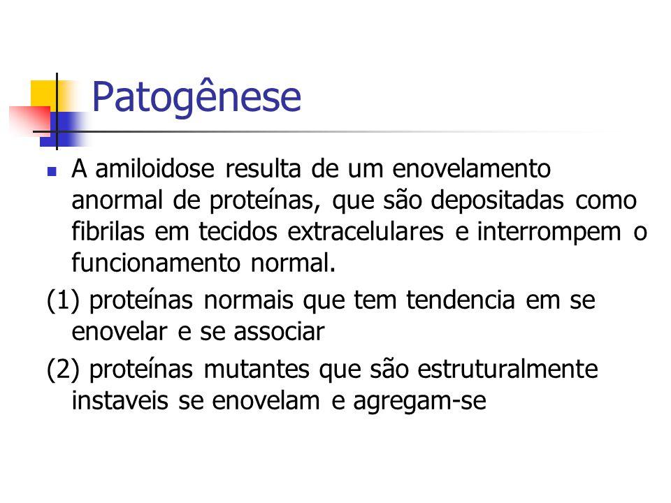 Patogênese A amiloidose resulta de um enovelamento anormal de proteínas, que são depositadas como fibrilas em tecidos extracelulares e interrompem o funcionamento normal.