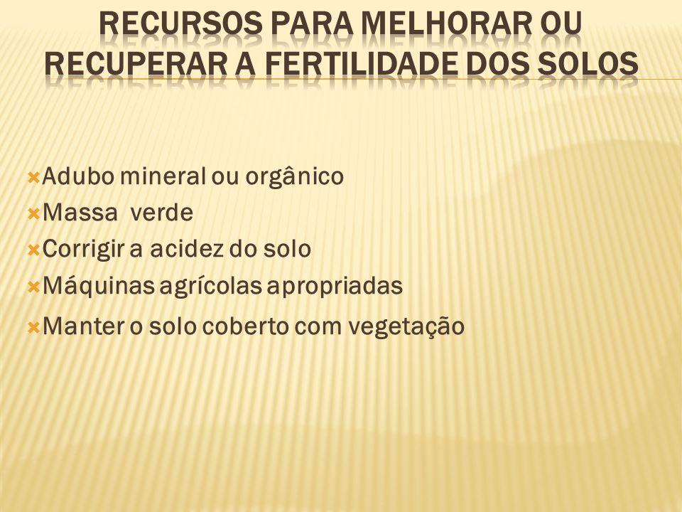 Adubo mineral ou orgânico Massa verde Corrigir a acidez do solo Máquinas agrícolas apropriadas Manter o solo coberto com vegetação