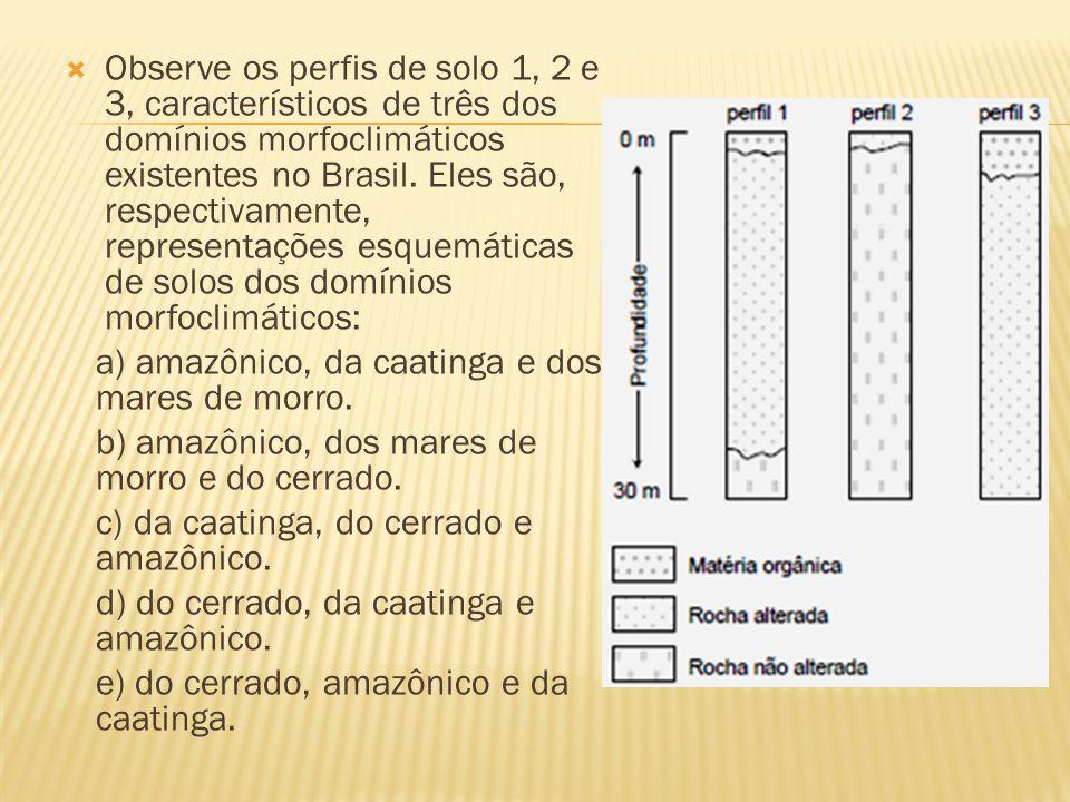 Observe os perfis de solo 1, 2 e 3, característicos de três dos domínios morfoclimáticos existentes no Brasil. Eles são, respectivamente, representaçõ