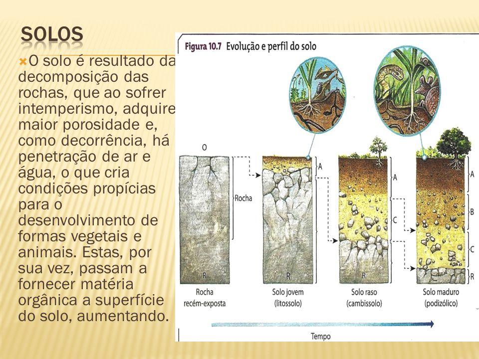 O solo é resultado da decomposição das rochas, que ao sofrer intemperismo, adquire maior porosidade e, como decorrência, há penetração de ar e água, o