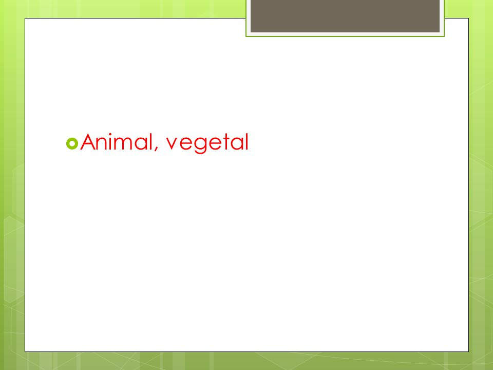PERGUNTA 6: Qual a origem do leite?