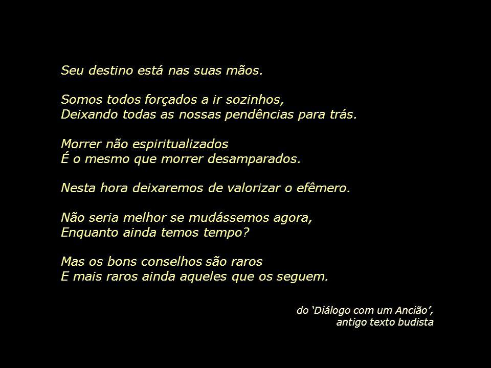 ...deveríamos ter outro olhar em relação à morte, aceitá-la como uma conseqüência lógica da vida. José Saramago
