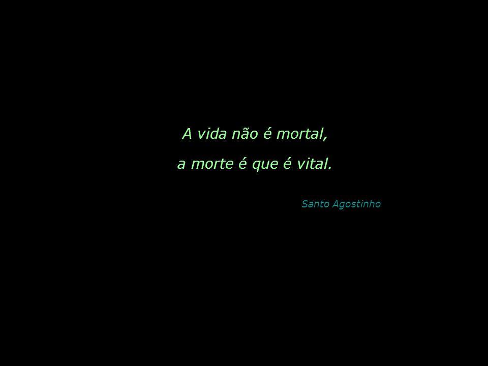 A vida não é mortal, a morte é que é vital. Santo Agostinho