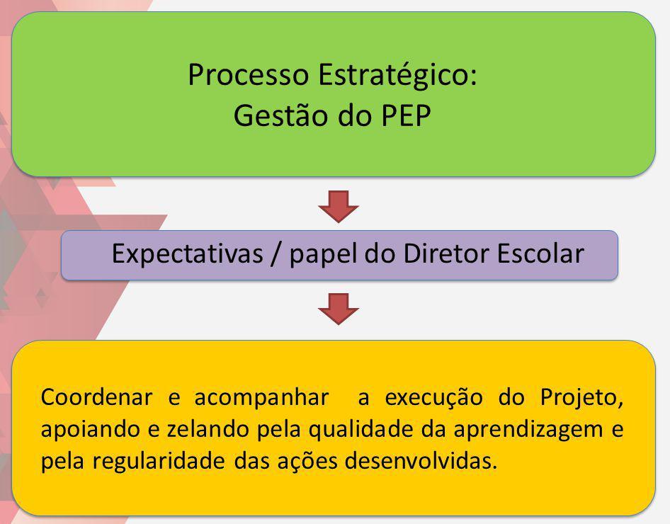 Processo Estratégico: Gestão do PEP Coordenar e acompanhar a execução do Projeto, apoiando e zelando pela qualidade da aprendizagem e pela regularidad