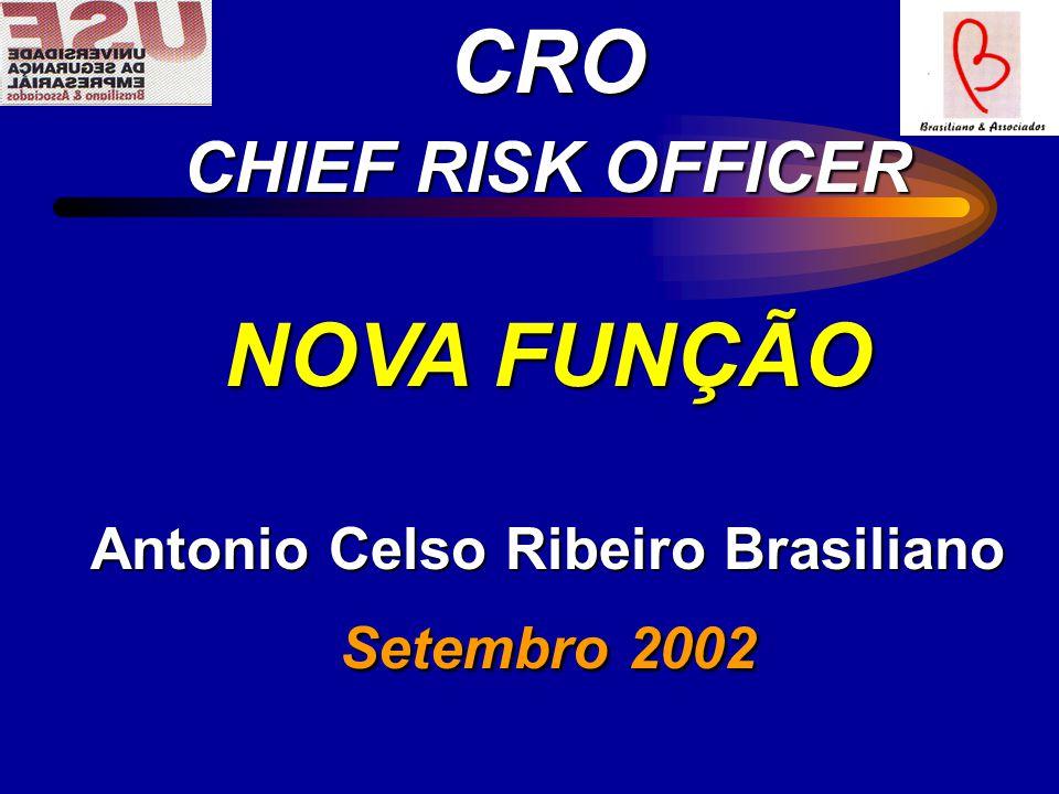 CRO CHIEF RISK OFFICER NOVA FUNÇÃO Antonio Celso Ribeiro Brasiliano Setembro 2002