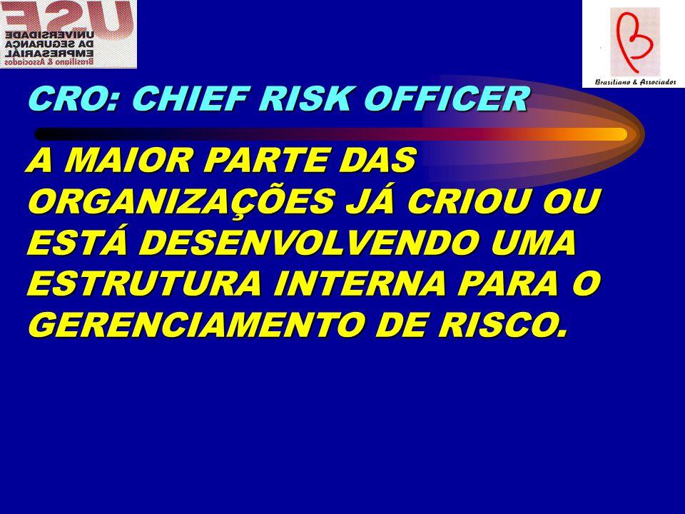 CRO: CHIEF RISK OFFICER A MAIOR PARTE DAS ORGANIZAÇÕES JÁ CRIOU OU ESTÁ DESENVOLVENDO UMA ESTRUTURA INTERNA PARA O GERENCIAMENTO DE RISCO.