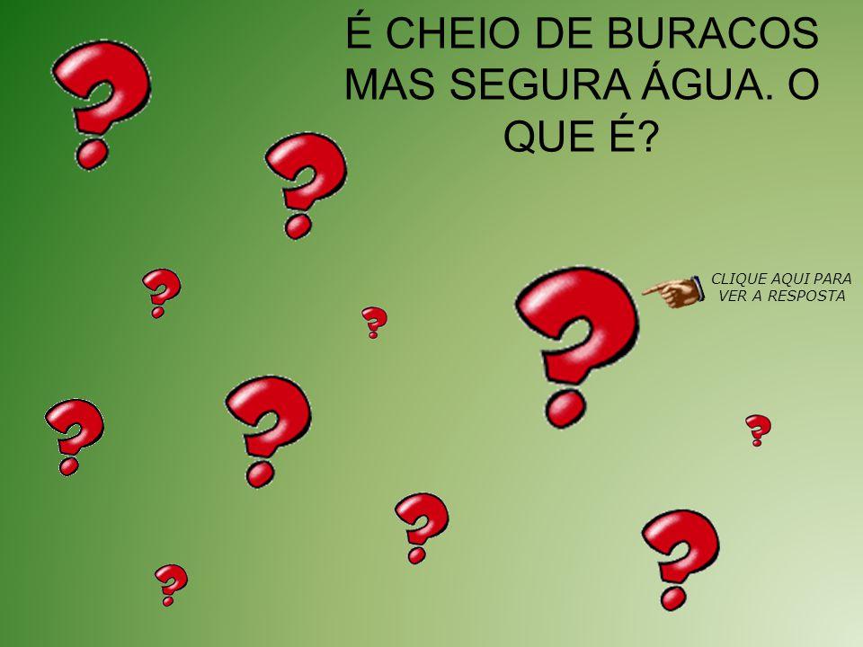 É CHEIO DE BURACOS MAS SEGURA ÁGUA. O QUE É? CLIQUE AQUI PARA VER A RESPOSTA
