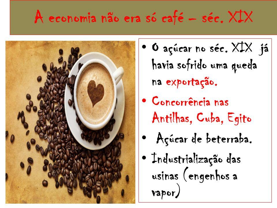 A economia não era só café – séc.XIX O açúcar no séc.
