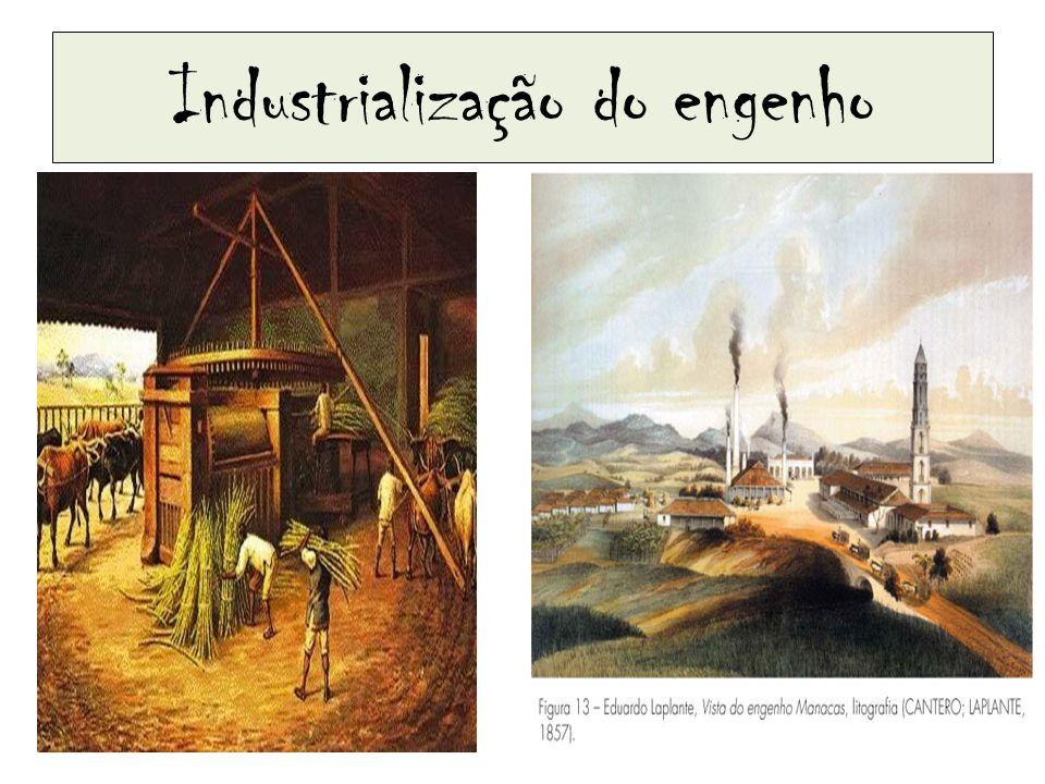 Década de 1860 – grande exportação.