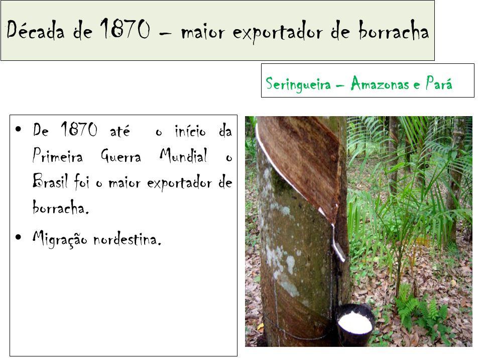Década de 1870 – maior exportador de borracha De 1870 até o início da Primeira Guerra Mundial o Brasil foi o maior exportador de borracha.