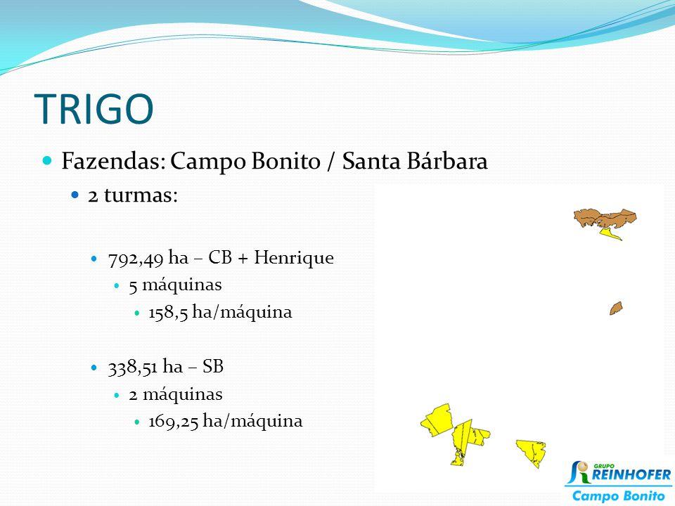 TRIGO Fazendas: Campo Bonito / Santa Bárbara 2 turmas: 792,49 ha – CB + Henrique 5 máquinas 158,5 ha/máquina 338,51 ha – SB 2 máquinas 169,25 ha/máqui
