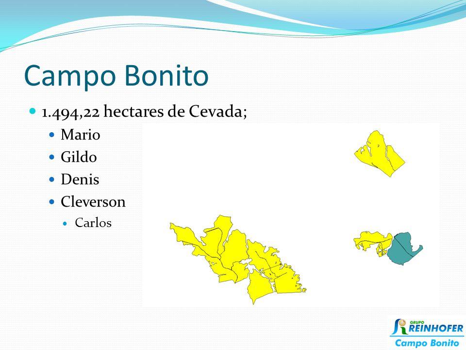 Campo Bonito 1.494,22 hectares de Cevada; Mario Gildo Denis Cleverson Carlos
