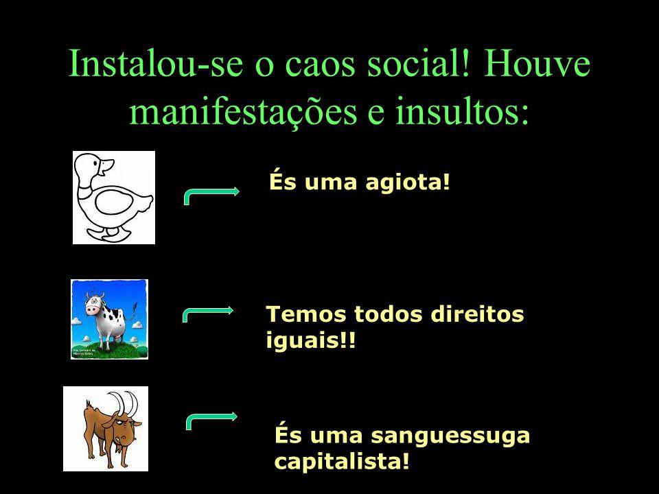 Instalou-se o caos social! Houve manifestações e insultos: És uma agiota! Temos todos direitos iguais!! És uma sanguessuga capitalista!