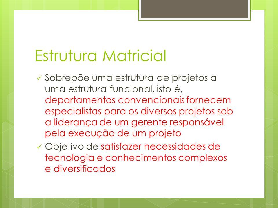 Estrutura Matricial Sobrepõe uma estrutura de projetos a uma estrutura funcional, isto é, departamentos convencionais fornecem especialistas para os d