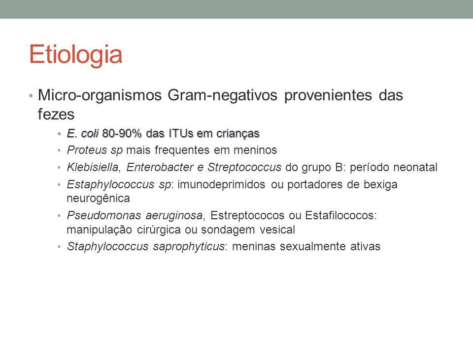 Etiologia Micro-organismos Gram-negativos provenientes das fezes E. coli 80-90% das ITUs em crianças E. coli 80-90% das ITUs em crianças Proteus sp ma