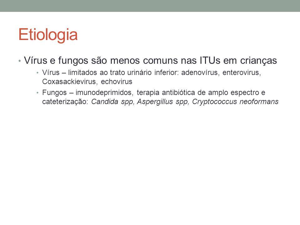 Etiologia Vírus e fungos são menos comuns nas ITUs em crianças Vírus – limitados ao trato urinário inferior: adenovírus, enterovirus, Coxasackievirus,
