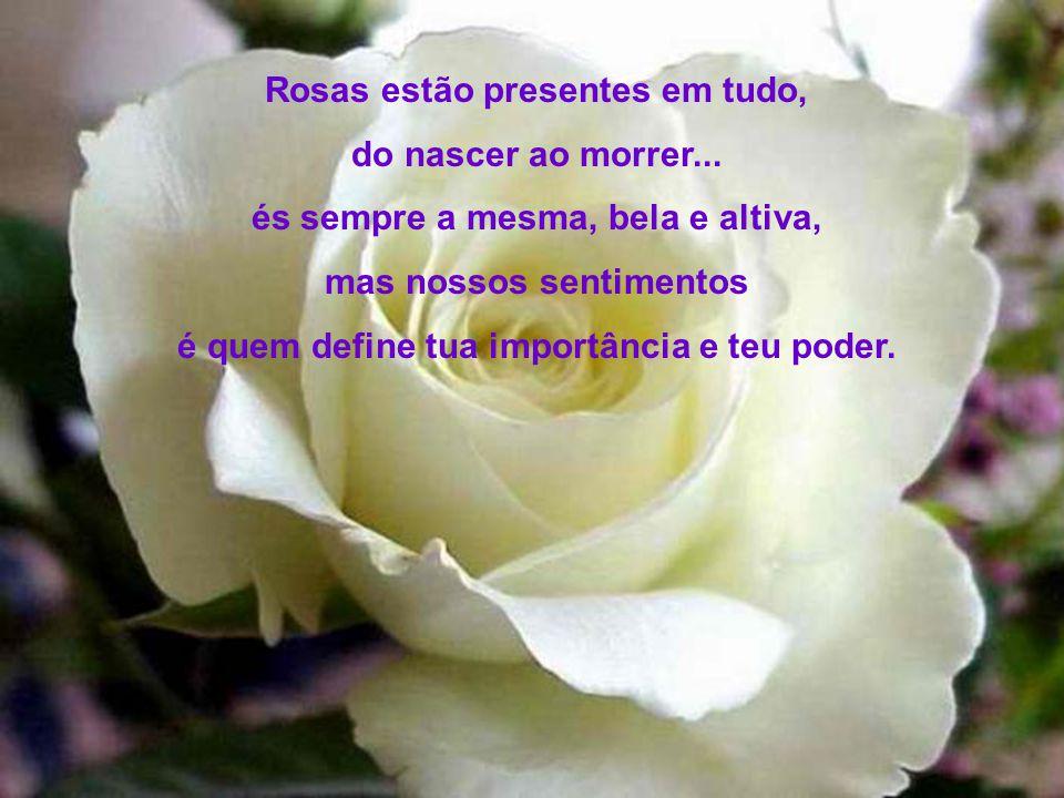Rosas estão presentes em tudo, do nascer ao morrer...