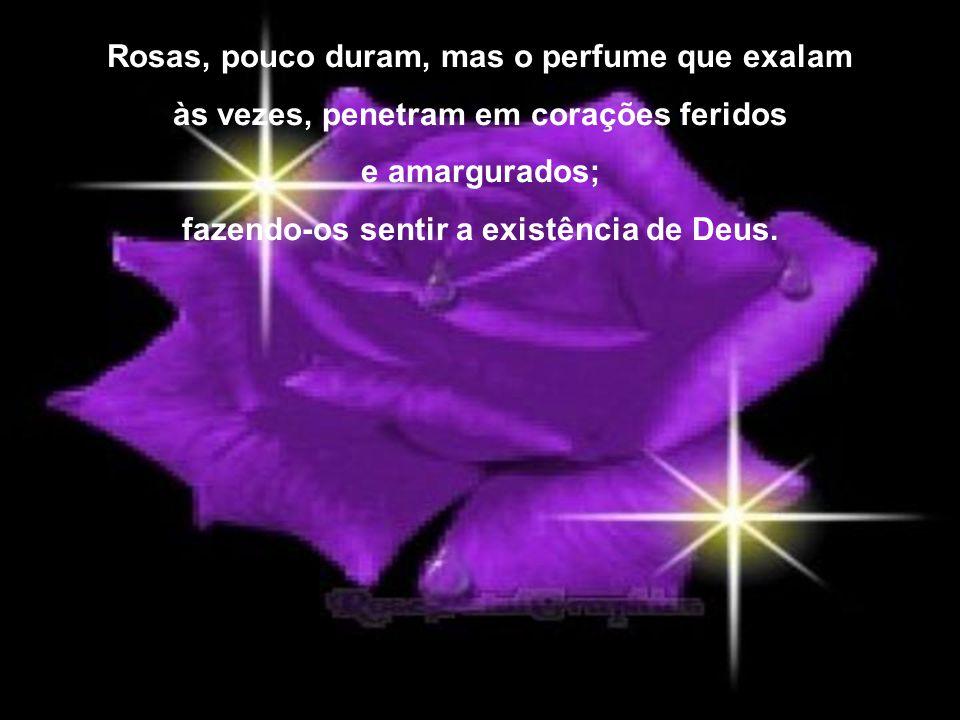 Rosas, pouco duram, mas o perfume que exalam às vezes, penetram em corações feridos e amargurados; fazendo-os sentir a existência de Deus.