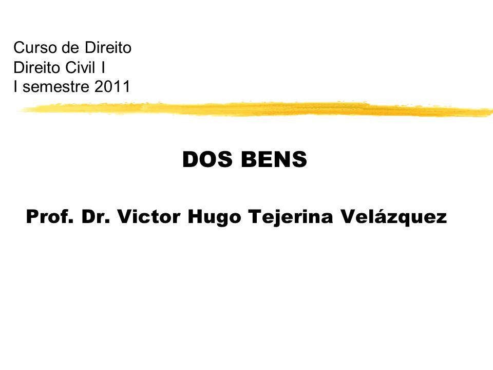 Curso de Direito Direito Civil I I semestre 2011 DOS BENS Prof. Dr. Victor Hugo Tejerina Velázquez