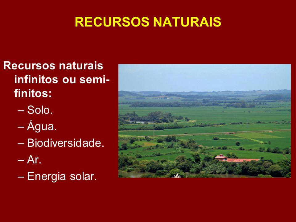 SUSTENTABILIDADE DO ECOSSISTEMA Ecossistema sustentável: energia que entra é igual a energia que sai.