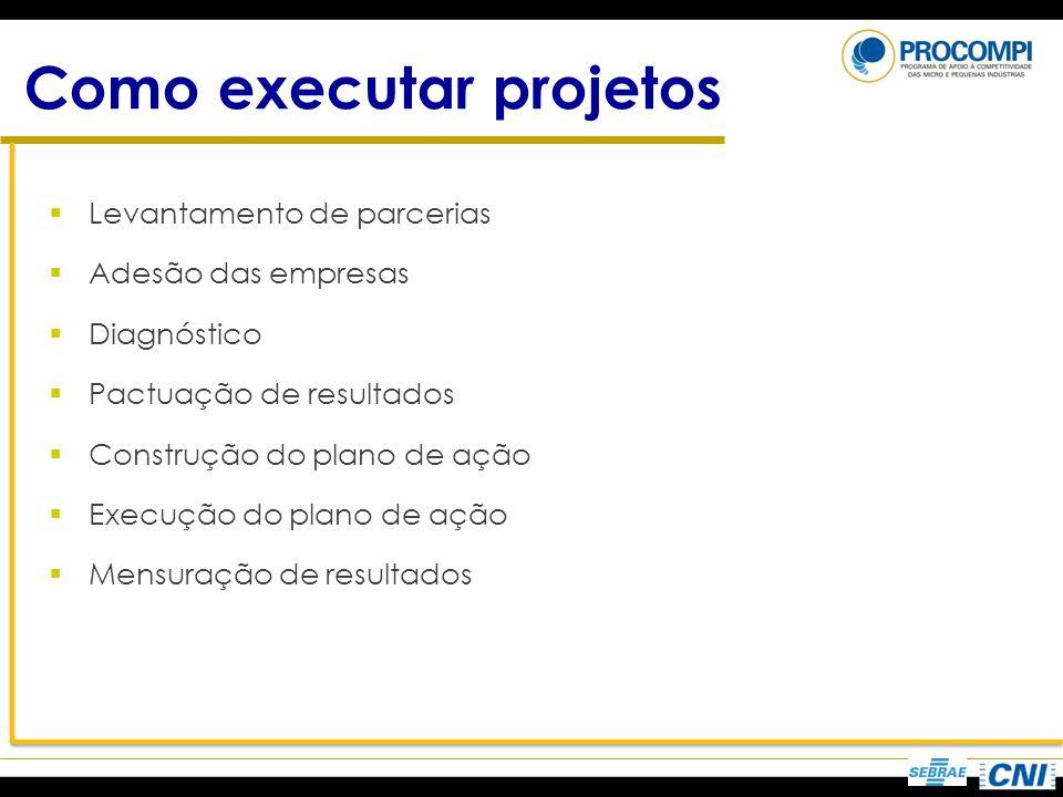 Como executar projetos Levantamento de parcerias Adesão das empresas Diagnóstico Pactuação de resultados Construção do plano de ação Execução do plano